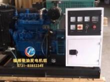 进口英国帕金森25KW柴油w88优德中文版准备交付